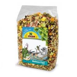 Jr Wellness Food Rato 600g
