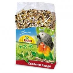 Jr Sementes P/ Germinar - Papagaio 1kg