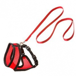 Kitten Harness Set Black / Red 10mm