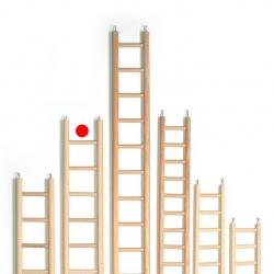 Escada Madeira 6 Deg. 10.5x39cm