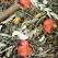 Jr Grainless Herbs Coelho-Anao 950g