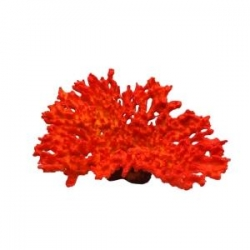 Decoracao Coral 23x18x14cm Red