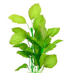 Planta Seda Brasil Plant3 - Xs