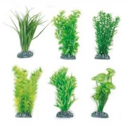 Planta Fiji em Plastico - L