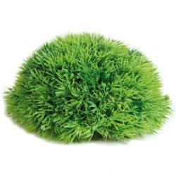 Meia Bola de Musgo 17cm p/ Aquario