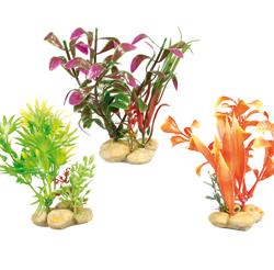 Planta Aquatica Com Pedras - S