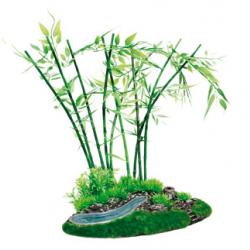 Planta Arbusto Bamboo Com Difusao De Ar