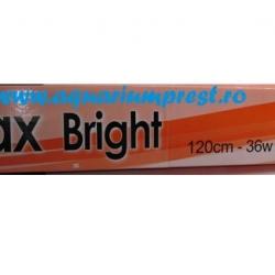 Az Max Bright Duplo 120cm 2x36w T8 Silver