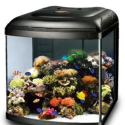 Aquario Marine Reef 108 Black