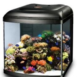 Aquario Marine Reef 108 Black