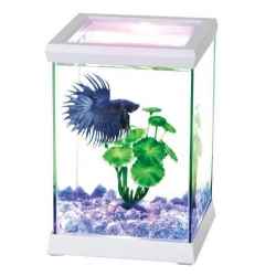 Of Betta Space White C/led 15.5x15.5x20.5cm
