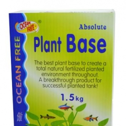 Of P12 Plant Base 1.5kg